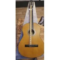 Valencia VC204H Klasik Gitar