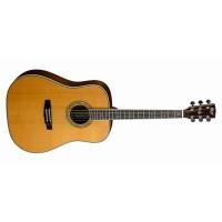 Cort EARTH700-NAT Akustik Gitarla (KILIF ve PENA HEDİYELİ) STOKTA KALMAMIŞTIR