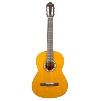 Valencia VC204H Klasik Gitar  ( KILIF ve PENA HEDİYELİ)